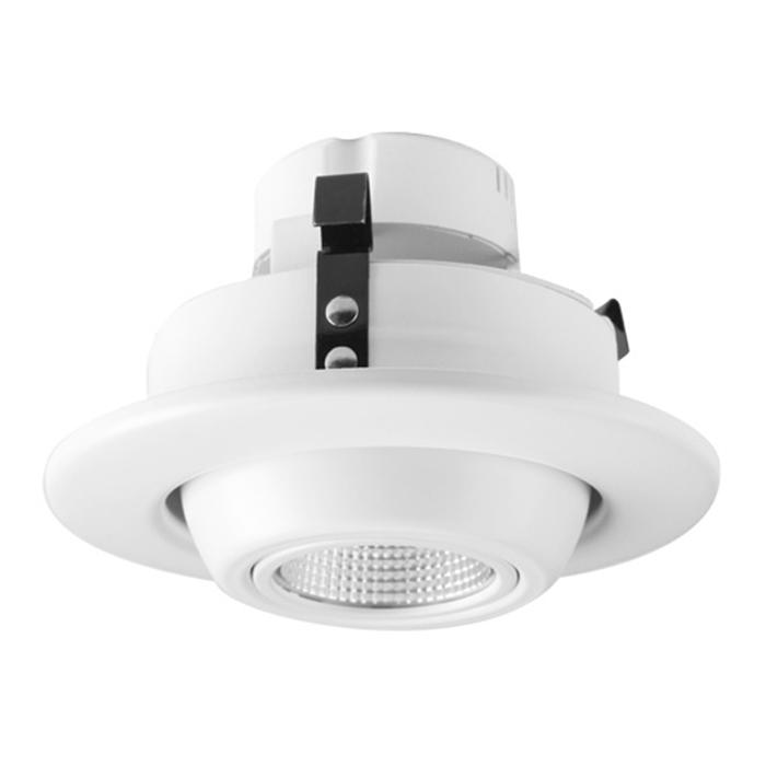 LED Eyeball downlight Retrofits