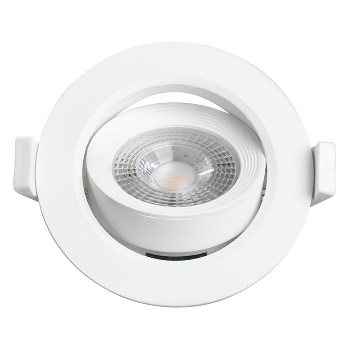 LED Rotatable Down Light